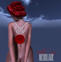 no. 7 Belles Rose Necklace