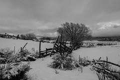 New Mexico Barn