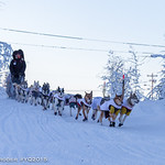 Mushers arrive in and depart from Pelly Crossing, Yukon. Credit : Yukon Quest 2015 - Julien Schroder