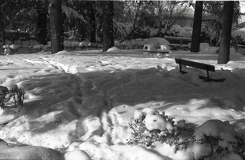 Big Snow 2015 !!!!