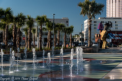 Fountain, Palms, and Sculpture