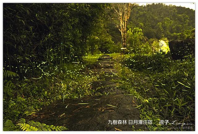 九樹森林 日月潭住宿 - 涼子是也 blog