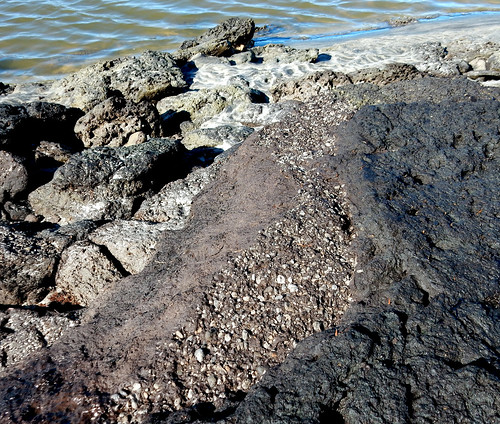 Layer of rounded pumice pebbles sandwiched between peat layers - Waipu River mouth