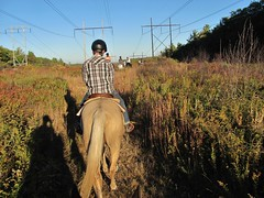 Trail Riding, Grafton Mass.