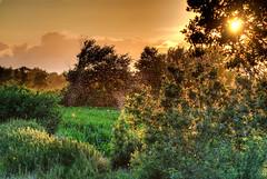 2012 07 20 Zwarte Meer Sundown