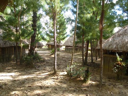 Papua13-Wamena Nord-Wosi -Suroba (19)