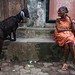 Black goat - Mumbai, India by Maciej Dakowicz
