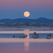 Moon in Penumbral Lunar Eclipse Rising Over Mono Lake