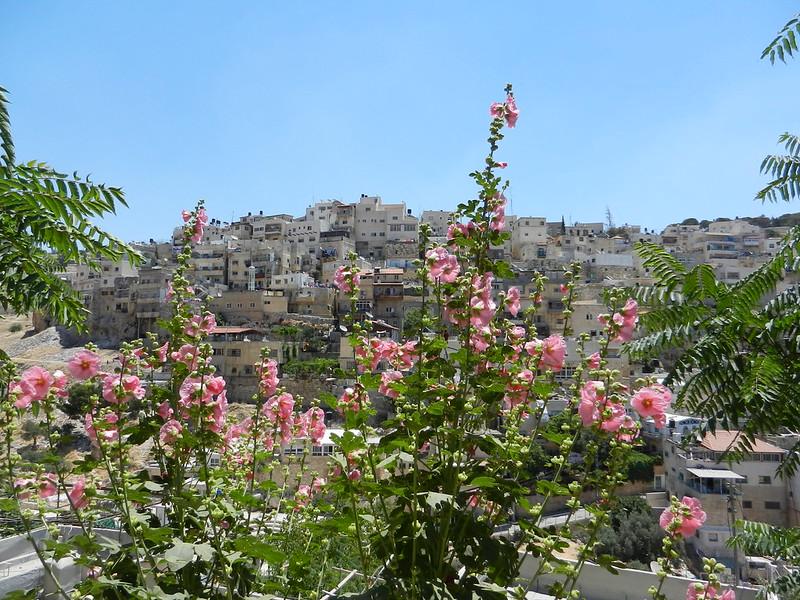 Силуан. Израиль