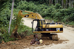 soil, wood, vehicle, tree, transport, off-roading, forest, natural environment, construction equipment, bulldozer, rural area,