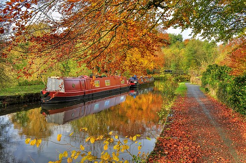Whaley autumn towpath