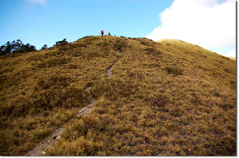 登頂油婆蘭山