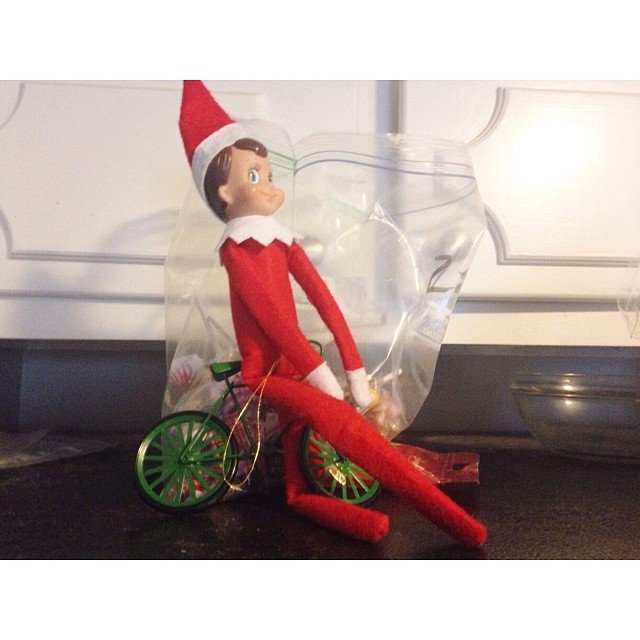 Snowball on a bike hanging out by some leftover Halloween candy! #elfontheshelf #bostineloschristmas2013 #notverycreativetoday