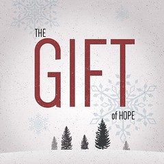 December_08__2013_at_0713AM_discover_hope