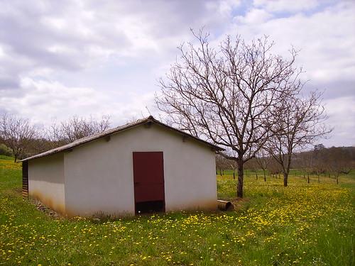 Cabane à la campagne