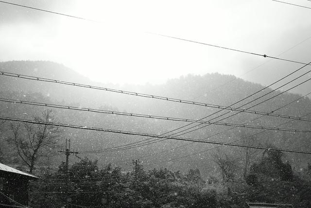 Ohara Kyoto, Dec 2013