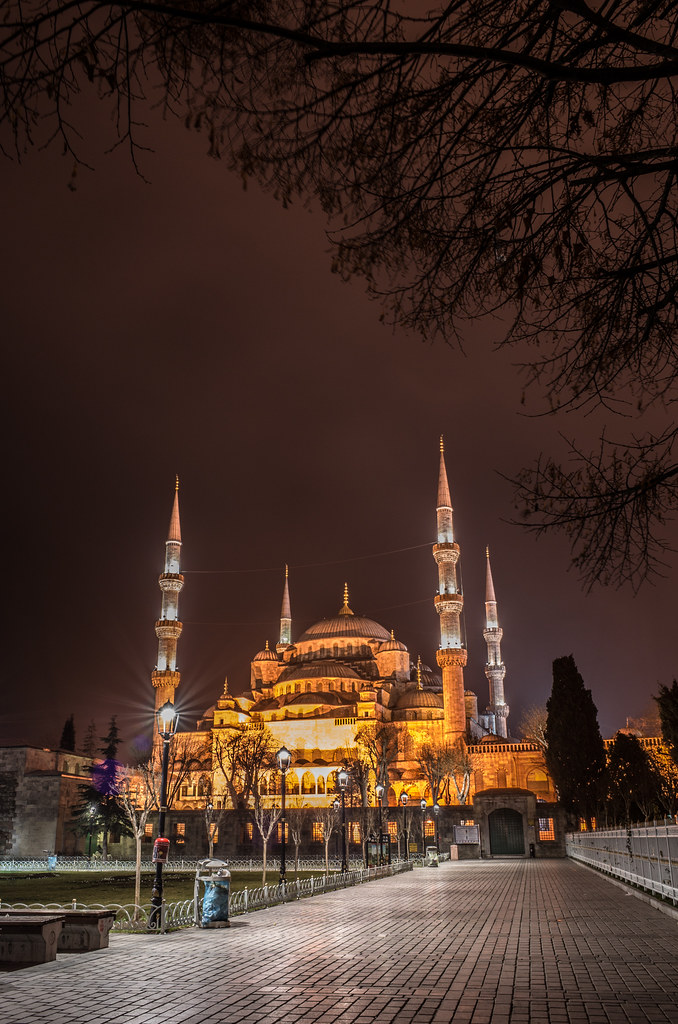The blue mosque at night picture