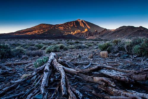 sunset panorama volcano evening day sonnenuntergang kanaren insel clear caldera teide canaries teneriffa teneriffe firstlight vulkan abendlicht canon1740l kanarischeinseln picodelteide roquesdegarcía 5dmkii 5dmk2 winter201314 isladelateneriffe