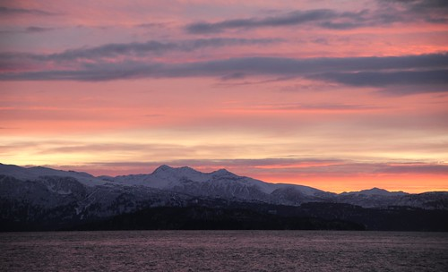 Purple waters sunset, pink dusky clouds, snowy mountains, island, view from Coal Point, Homer Spit, Katchemak Bay, Homer, Alaska by Wonderlane