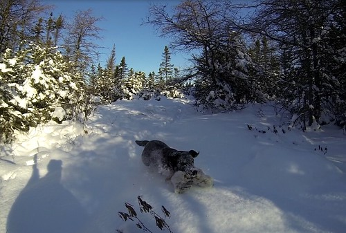 Powder Retrieve