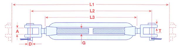 01575 Stainless Steel Straining Screws