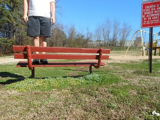 Bench Monday: Early Spring Edition