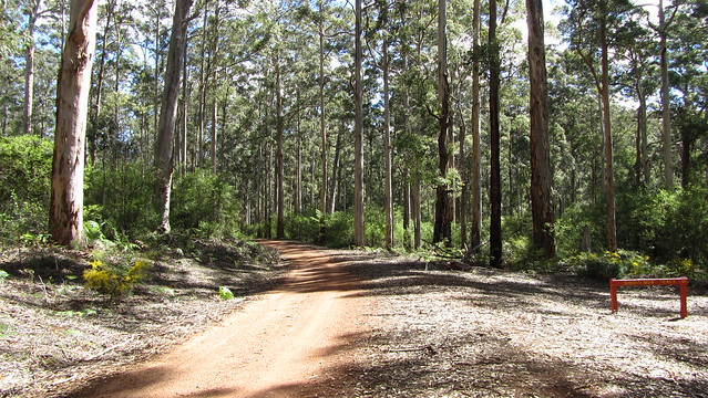 Day 26: Road to Donnelly River Village