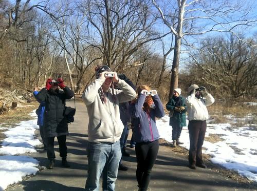 March 1: Bird Walk in TCP