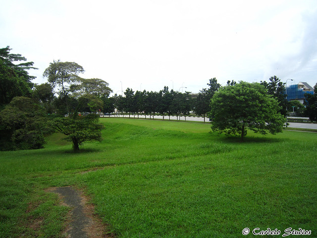 Bidadari Muslim Cemetery 04