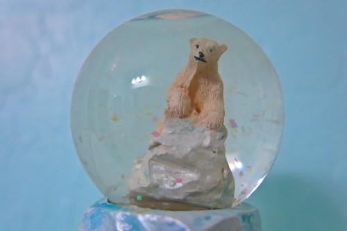 64/365 Polar Bear Snow Globe