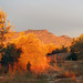 A sunny break at sunrise, ein Sonnenblick bei Sonnenaufgang by Marlis1