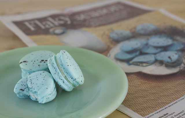bird-egg-spotted macarons