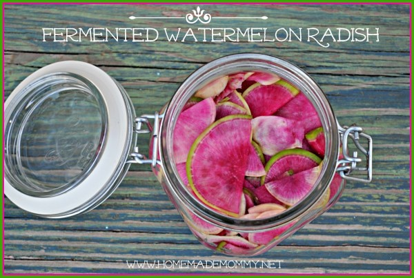 Fermented Watermelon Radishes -- Fermented foods taste amazing and are fabulous for your health! Try these great ideas to get your inspired! A great new years resolution!