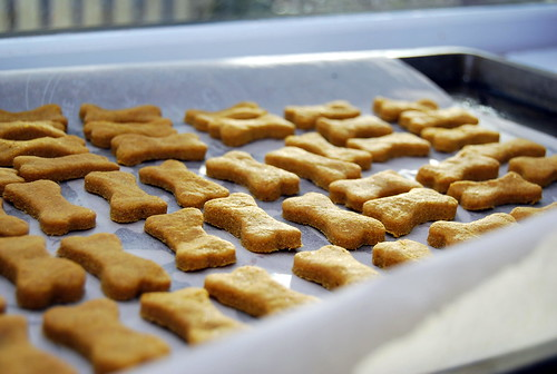 Homemade Peanut Butter and Pumpkin Dog Biscuits-001 (1)