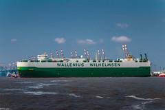 Wallenius Wilhelmsen Oberon