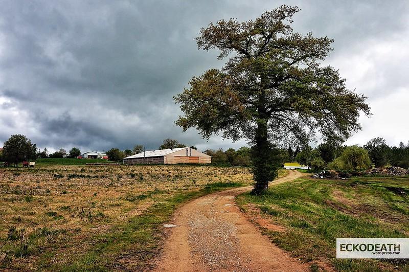 Aveyron Mai 2014 (8)