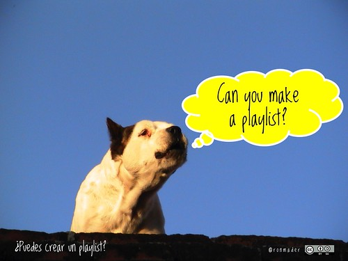 Can you make a playlist? = ¿Puedes crear un playlist? #roofdog