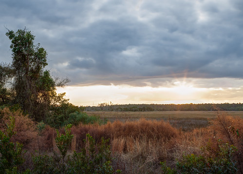 winter light sunset sun sunlight color nature grass clouds canon georgia landscape marsh harrisnecknationalwildliferefuge canon7d