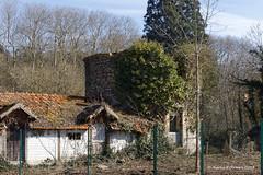 58 St-Benin-d'Azy - Château Viel Azy Pigeonnier - Photo of Saint-Benin-d'Azy