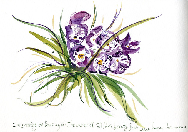 Sketchbook #95: Freesia