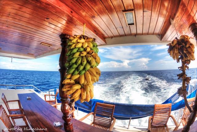 小腹が空いたら島バナナ♪