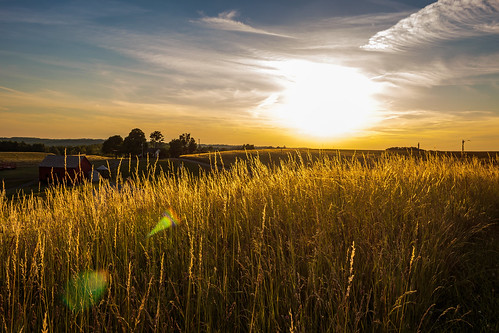 light sunset field landscape scenic davidsharo