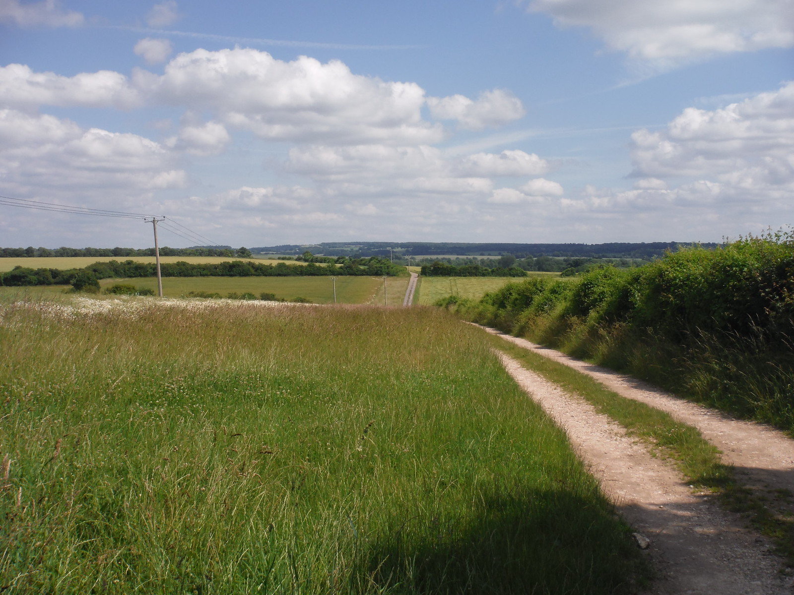 The Track to Houghton SWC Walk 265 - Dean to Mottisfont and Dunbridge