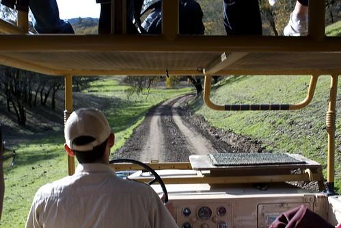 Safari Tour at Safari West, Sonoma