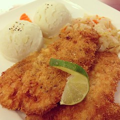 tonkatsu, panko, fried food, cutlet, meat, korokke, schnitzel, food, dish, cuisine,