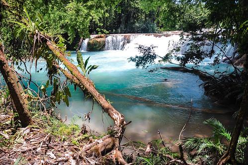 Cascadas de Agua Azul (51)