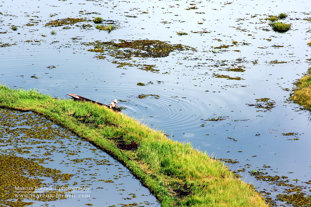 Rural fisherman on Loktak Lake in Manipur