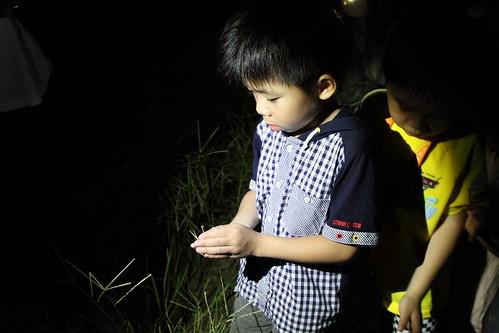 夜探@閱野親子海洋營