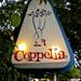 Small photo of Coppelia