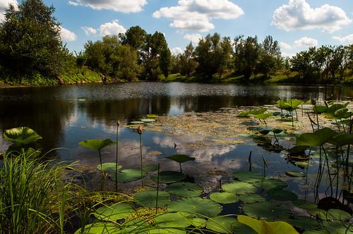 nature landscape nikon nikond90